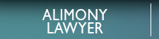 Alimoney Lawyers in Bonita Springs